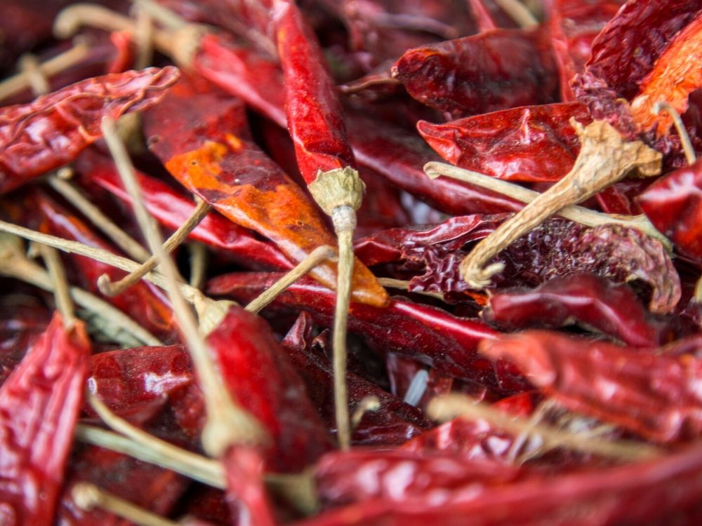 how to dry chillies and store them
